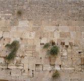 Westelijke Muur Stock Afbeelding