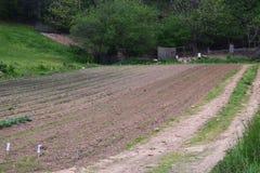 Westelijke NC-berglandbouwbedrijf geploegde tuin stock foto's