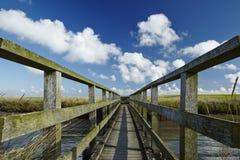 Westerhever (Γερμανία) - αλατισμένο λιβάδι με τη γέφυρα για πεζούς στοκ φωτογραφία με δικαίωμα ελεύθερης χρήσης