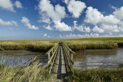 Westerhever (Γερμανία) - αλατισμένο λιβάδι με τη γέφυρα για πεζούς στοκ εικόνες με δικαίωμα ελεύθερης χρήσης