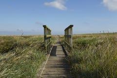 Westerhever (Γερμανία) - αλατισμένο λιβάδι με τη γέφυρα για πεζούς στοκ φωτογραφίες με δικαίωμα ελεύθερης χρήσης
