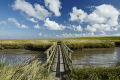 Westerhever (Germany) - Salt meadow with footbridge Stock Images