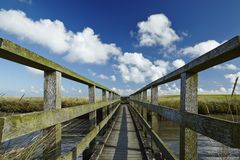Westerhever (Germany) - Salt meadow with footbridge Royalty Free Stock Photo
