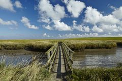 Westerhever (Germany) - Salt meadow with footbridge Royalty Free Stock Images