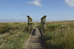 Westerhever (Germany) - Salt meadow with footbridge Royalty Free Stock Photos