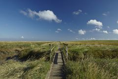 Westerhever (Germany) - Salt meadow with footbridge Royalty Free Stock Image