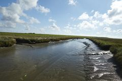 Westerhever (Germany) - Salt meadows with ditch Royalty Free Stock Photography