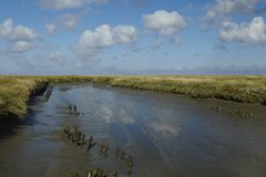 Westerhever (Germany) - Salt meadows with ditch Royalty Free Stock Images