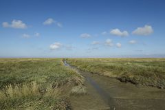 Westerhever (Germany) - Salt meadows with ditch Royalty Free Stock Photos