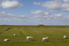 Westerhever light house (Germany) stock images