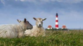 Westerhever Lighthouse Stock Photos