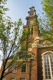 Westerkerk kyrkligt torn i Amsterdam Royaltyfri Fotografi