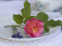 Westerland在一个浪漫餐位餐具上升了 免版税库存照片