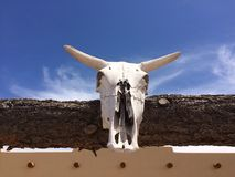 Western Abode. Desert, southwest, cow skull, cowboy, western Arizona Royalty Free Stock Photo