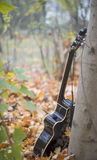 Western acoustic guitar in nature. Lonely acoustic guitar in the forest Stock Photos