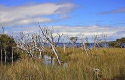 Western Australia: D'entrecasteaux n. park Stock Photos