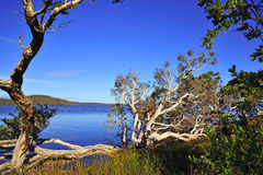 Western Australia: D'entrecasteaux n. park Royalty Free Stock Photo