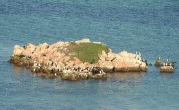 Western Australia, eagle island Royalty Free Stock Images