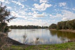 Western Australia Wetland Stock Photography