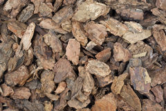 Western bark nuggets background. Background of coarse western bark nuggets used for gardening and landscaping Stock Photo