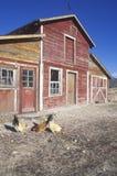 Western barn Stock Photography