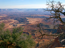 Western beauty. Beautiful vista in Canyonlands National Park in Utah Stock Images