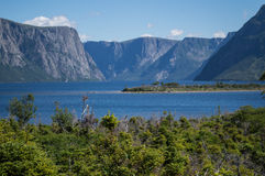 Western Brook Pond in Gros Morne National Park in Newfoundland Royalty Free Stock Image