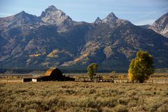 Western buildings with Tetons Royalty Free Stock Images