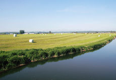 Western Canada Agricultural Countryside Royalty Free Stock Photo