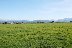 Western Canada Agricultural Landscape Royalty Free Stock Photos