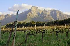 Western Cape rural scene Stock Image