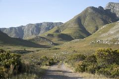 Mountain track in the Western cape region of Southern Africa Royalty Free Stock Photos