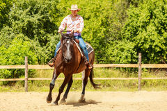 Western cowgirl woman riding horse. Sport activity. Active western cowgirl woman in hat training riding horse. American girl in countryside ranch. Horseback Stock Photo