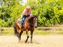 Western cowgirl woman riding horse. Sport activity Royalty Free Stock Image