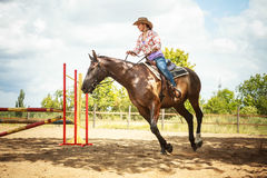 Western cowgirl woman training riding horse. Sport. Active western cowgirl woman training riding horse jumping over fence. Equestrian sport competition and Royalty Free Stock Photography