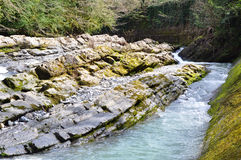 Western Dagomys River. Canyon to recreational facilities Koryta. Sochi. Russia Royalty Free Stock Images