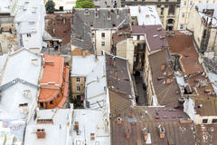 Western european city Lviv Stock Image