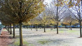 Walk in the park in autumn. A warm autumn day in the west of France. Stock Photos