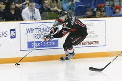 Western Hockey League (WHL) Game Royalty Free Stock Photography