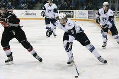 Western Hockey League (WHL) Game Royalty Free Stock Photos