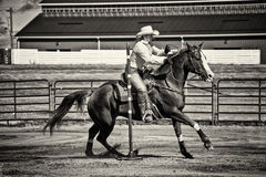 Western Horse Pole Bender Royalty Free Stock Images