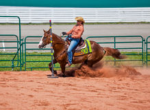 Western Horse and Rider Stock Photography