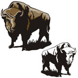 Western illustration series. Vector illustration of a bison. EPS file available stock illustration