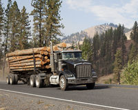 Western long log tandem trailer truck Royalty Free Stock Photography