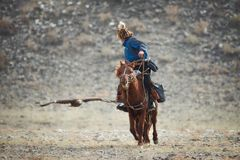Western Mongolia,Golden Eagle Festival.Mongolian Rider-Hunter In Blue Clothes And A Fur Hat On Brown Horse  And The Flying Golden Royalty Free Stock Photo