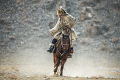 Western Mongolia.Traditional Golden Eagle Festival. Unknown Mongolian Hunter In Traditional Clothes Of Wolf Fur  Astride On Brown. Horse. Falconry In West Royalty Free Stock Photo