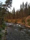 Western montana river. Scenic view on rock creek in montana Royalty Free Stock Photos