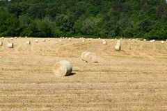 Western NC mountain farmers hay field Stock Photo