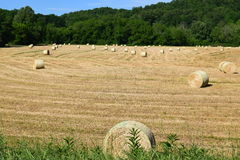 Western NC mountain hay field Royalty Free Stock Images