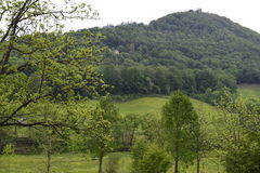Western NC mountain rural fam pasture royalty free stock image